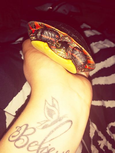 Nugget One Of My Turtles Pet Painted Turtle Love Her Tattoo Wrist Tattoo Believe