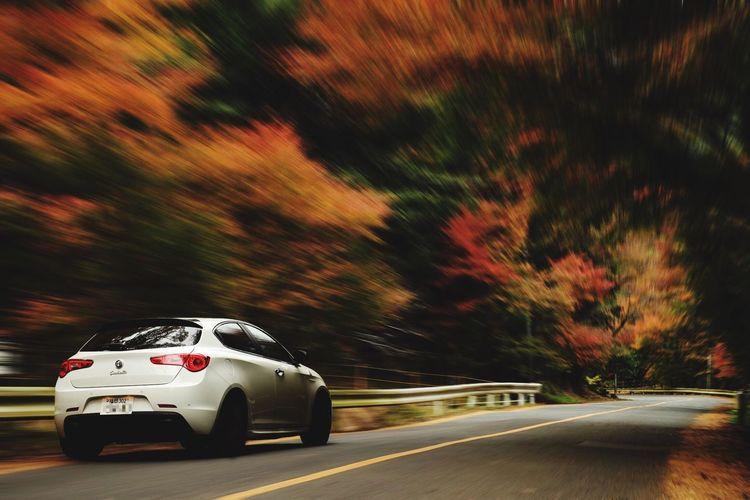 The Drive Japan Car