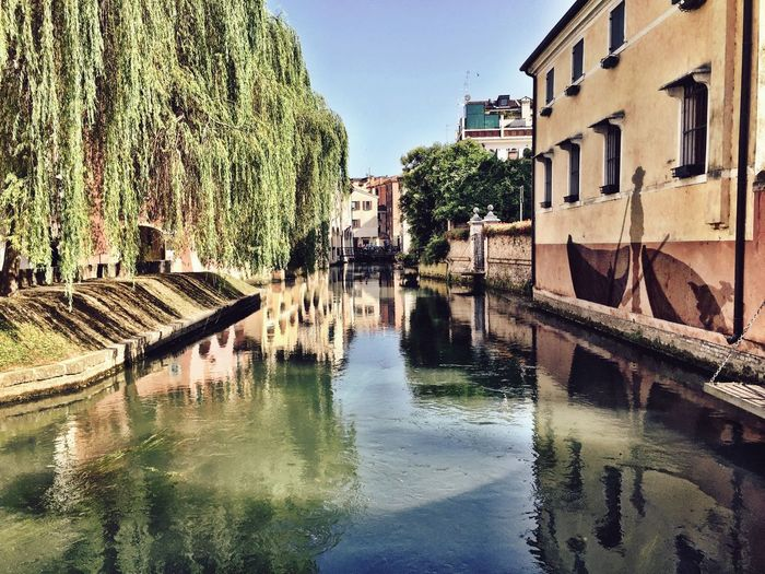 Buranelli Taking Photos Graffiti Graffiti Art Treviso Old Town Water Reflections Veneto Italy Peaceful Italy IPhoneography Treviso, Italy Veneto Italian Canal Walking Around My Favorite Place Check This Out From My Point Of View Water Bridge Weeping Willow Hidden Gems  Idyllic Idyllic Scenery