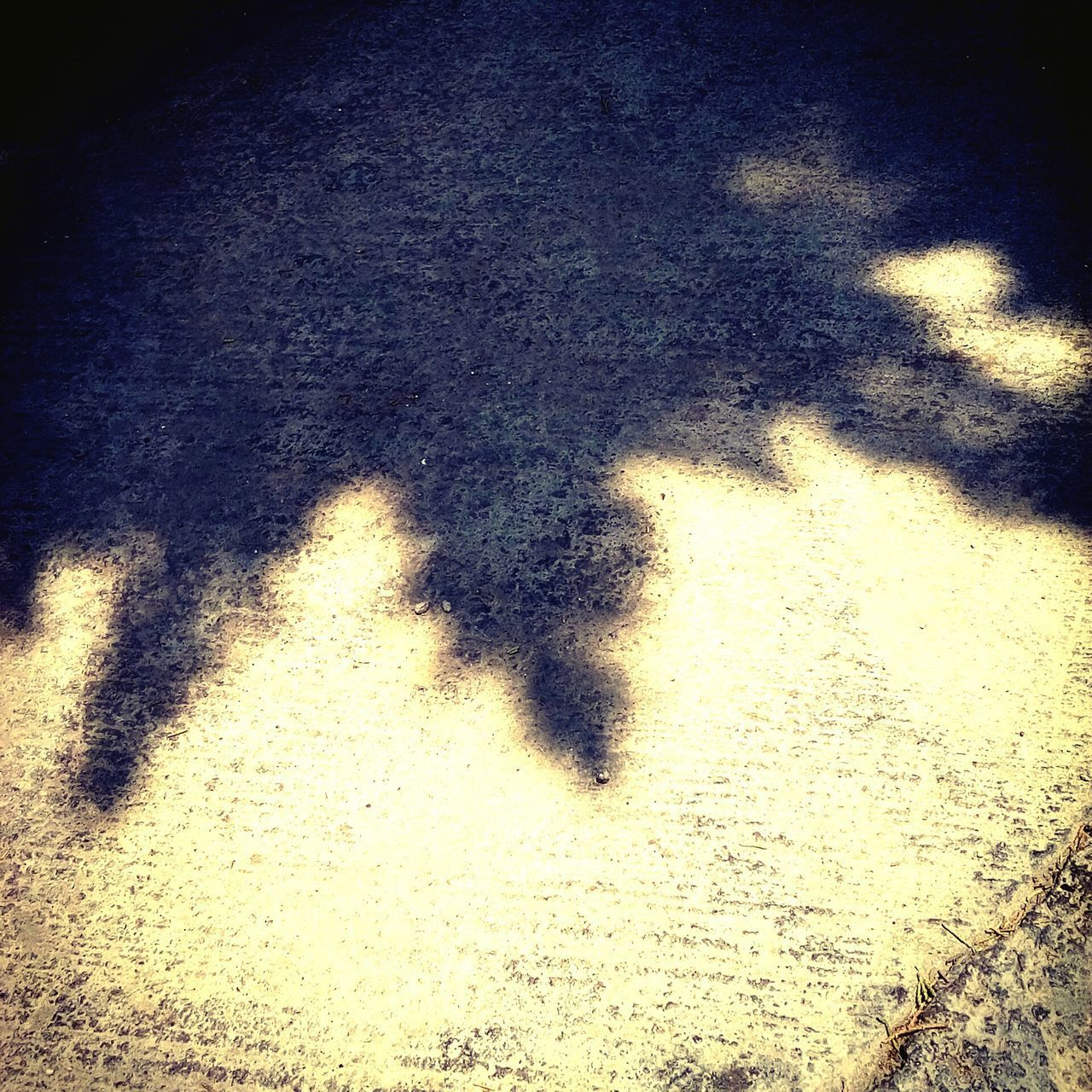 shadow, high angle view, focus on shadow, sunlight, day, outdoors, no people, water, road, puddle, nature, close-up, low section