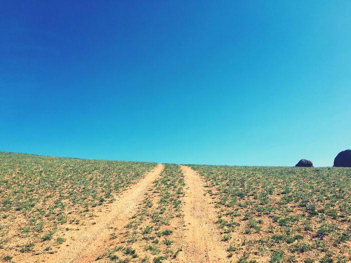 Blue Land Field