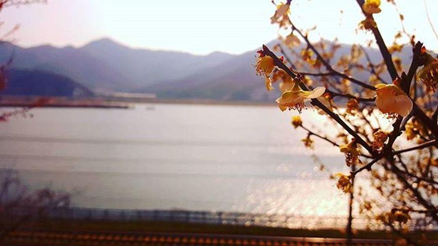 부산 Busan 바다 일상 데일리 감성 감성사진 사진 여행 일상공유 맞팔 Sotong 미러리스카메라 Follow Followme Photo Travel Daily Southkorea