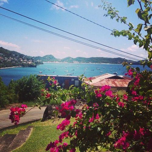 View x 20 View GrandAnseBeach Grenada Nikond40 Lumia920