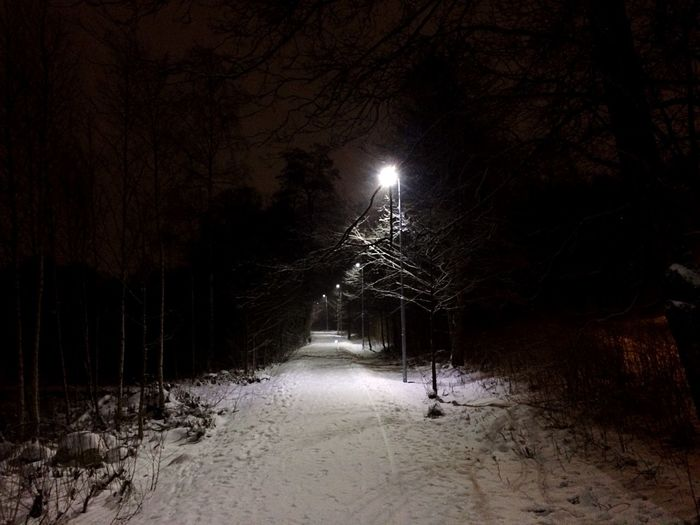 Illuminated street amidst bare trees during winter at night