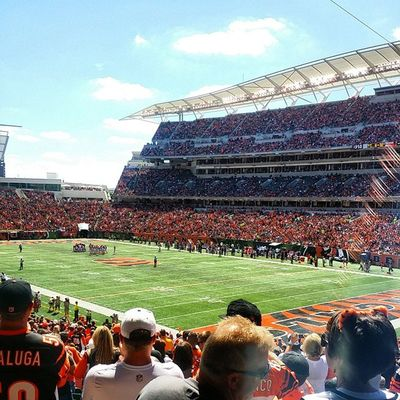 Perfect day WhoDey