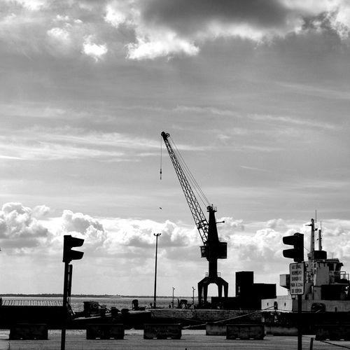 Jornalistasdeimagens Black & White Noirlovers Lisboalive