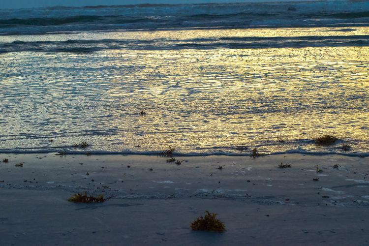 New Smyrna Beach Ocean Beach Beachphotography Water Water Reflections Florida GayneGirlPhotography Sunrise EyeEm Best Shots EyeEm Gallery EyeEmBestPics EyeEm Best Shots - Sunsets + Sunrise Sunrise And Clouds Sunrise Porn