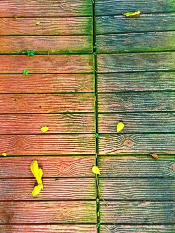 Footpath Gardening Close-up Day Decoration Garden Garden Photography Gerdening Leaf No People Outdoors Wood - Material