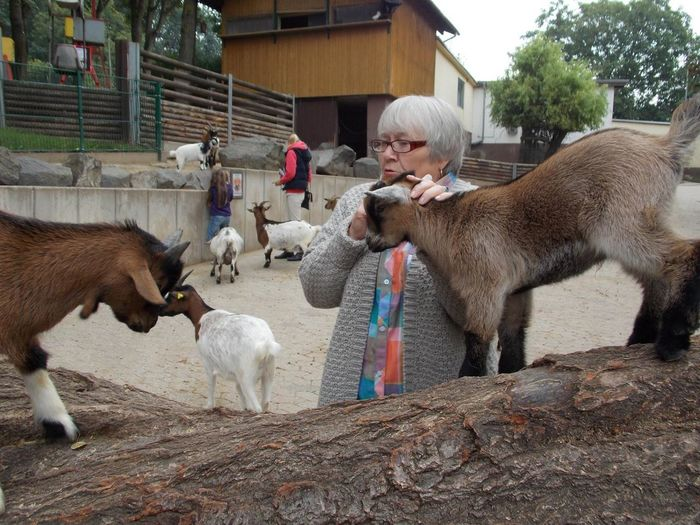 Senior Woman Petting Goat