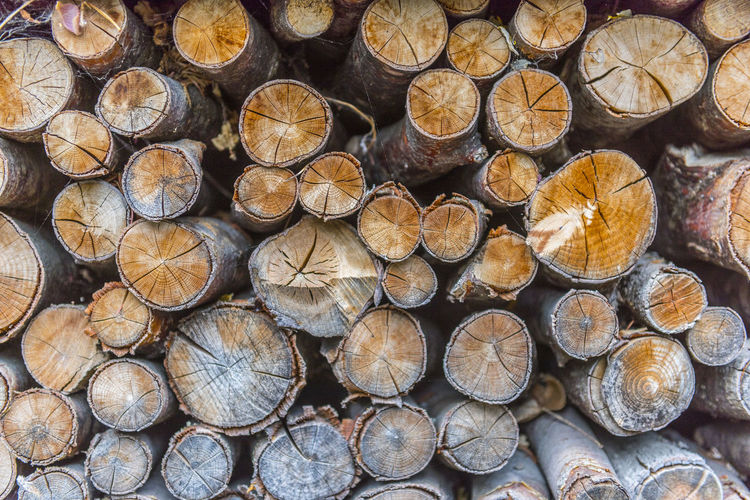 Abundance Backgrounds Chopped Deforestation Environmental Issues Firewood Forest Fuel And Power Generation Full Frame Heap Large Group Of Objects Log Lumber Industry No People Outdoors Pattern Stack Timber Tree Wood Wood - Material Woodpile