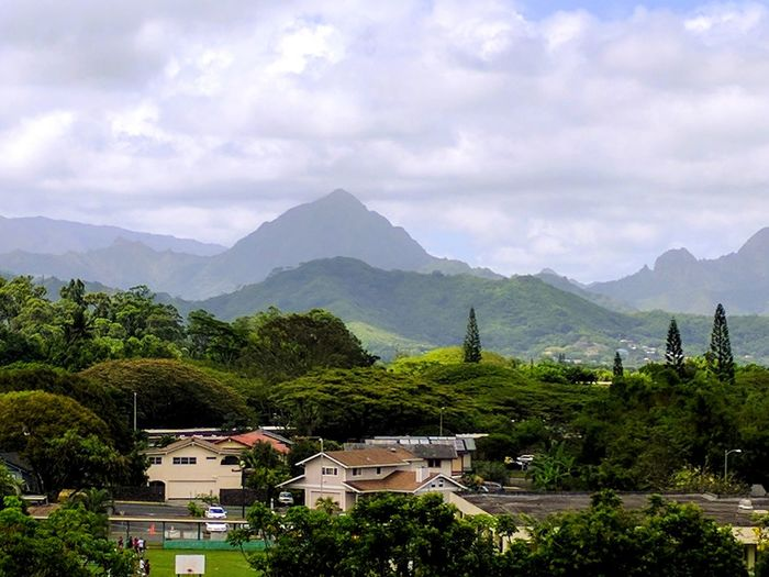 wonderful view from the memorial park Mountain Range Landscape Beauty In Nature Nature EyeEm Gallery EyeEm Nature Lover Beauty In Nature Trees Lush Greenery Windward Oahu Koolau Mountains No People Memorial Park Cloudy Day Overcast Trees And Sky Verdant Lush Green Mountains Neighborhood Map