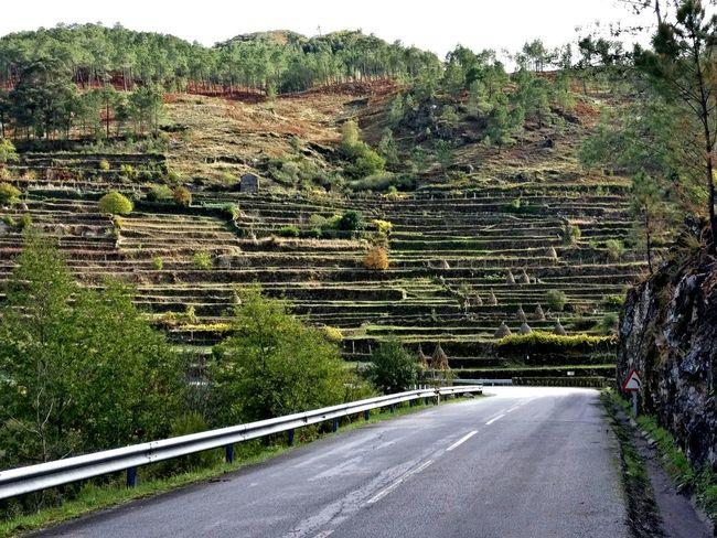 Turn Left Rural Scene Roadtrip Secret Places