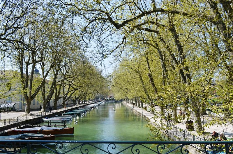 Pont des amores Annecy Pont Des Amores Nature River Water Day Architecture Beauty In Nature France🇫🇷 Travel Nature Lake Nikon D5100  Traveling Hollydays Photography Annecy Lake Annecy, France Landscape Beauty In Nature