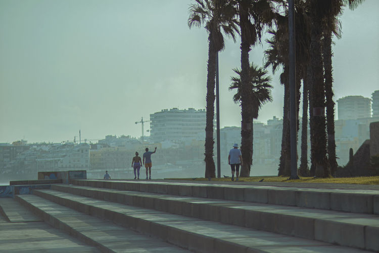 People walking by palm trees against sky