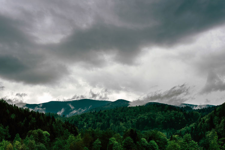 Cloud - Sky Beauty In Nature Scenics - Nature Mountain Tree Storm Plant Sky Storm Cloud Environment Tranquil Scene Nature No People Non-urban Scene Tranquility Forest Overcast Dramatic Sky Green Color Mountain Range Outdoors Ominous Rain