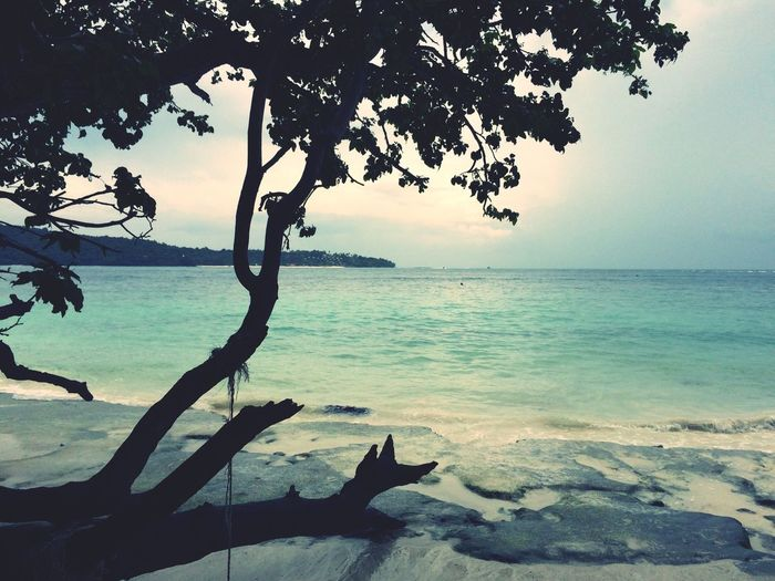 Monkey beach Travelling Enjoying Life Krabi Thailand
