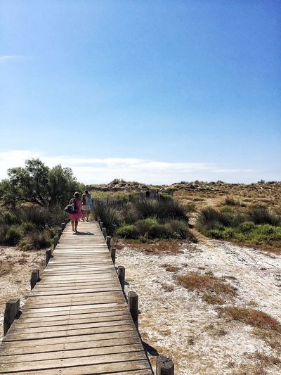 What's On The Roll Walking To The Beach Walking To The Sea Beauty In Nature Nature Landscape Enjoying The Sun Athleisure Footbridge Sky Trees Trees And Sky France Occitanie Hérault Les Orpellières Serignan Mediterranean  People And Places People And Places People And Places