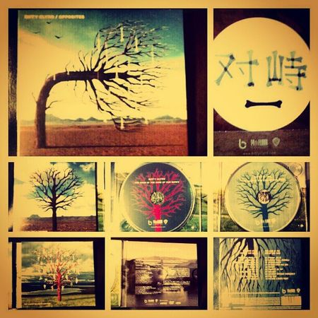Hubster is out walking the dog, which means I can finally listen to BIFFY! :) Mycamerastories Montage Biffy BiffyClyro scottish music album monthebiff love listen opposites sigh beautiful design trees heaven cd happy