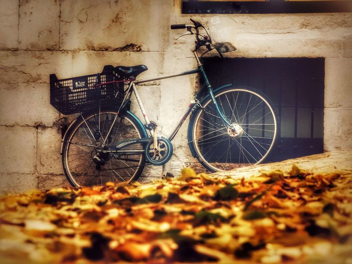 Bicycle Mode Of Transport Transportation Stationary Land Vehicle No People Day Outdoors Building Exterior Architecture TheVille Street Photography Somosfelices Gironamenamora Capture Moment Taking Photos Enjoying Life Autumn Colors Autumn Autumn🍁🍁🍁 Autumn Leaves