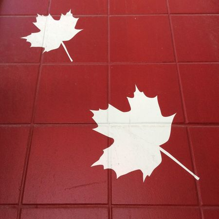 CN TOWER Toronto Canada Red Tiles With White Maples Leaves National Emblem of Canada How Do You Represent Canada
