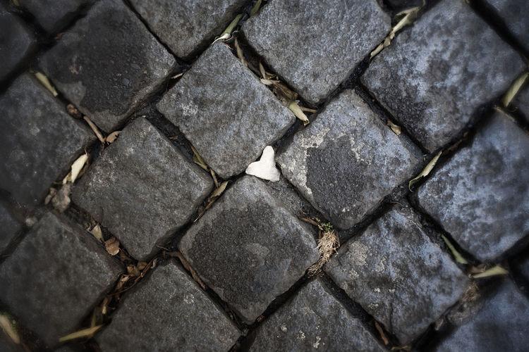 Heart Shape Heart Stones Lisboa Portugal Lisbon Street Lisbon Streets Outdoors Paving Stone Stone Material Stone Tile