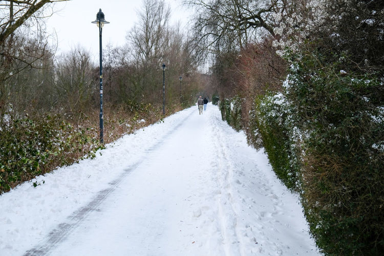 People walking on snow covered footpath by trees