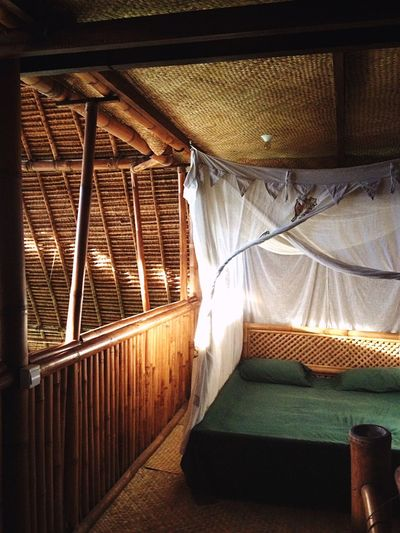 Bamboo light!
