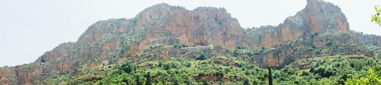 Landscape Nature Forest Montains