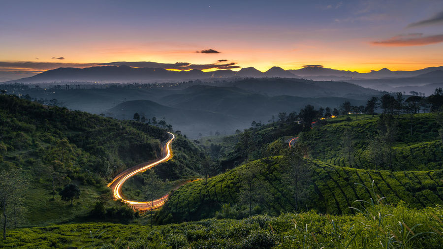 Sunrise view at tea plantation in bandung, indonesia