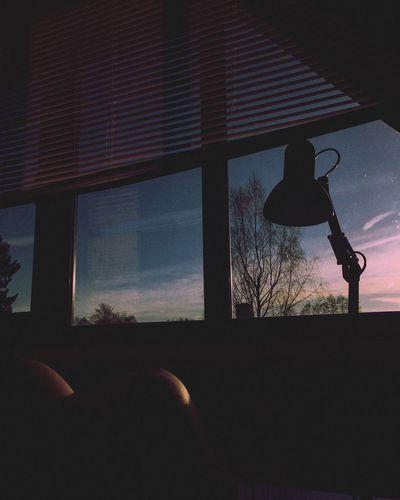 Sunny days 🌞
