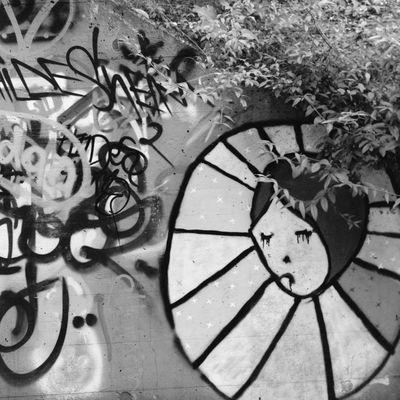 Vscocam Blackandwhite Streetart Streetphotography