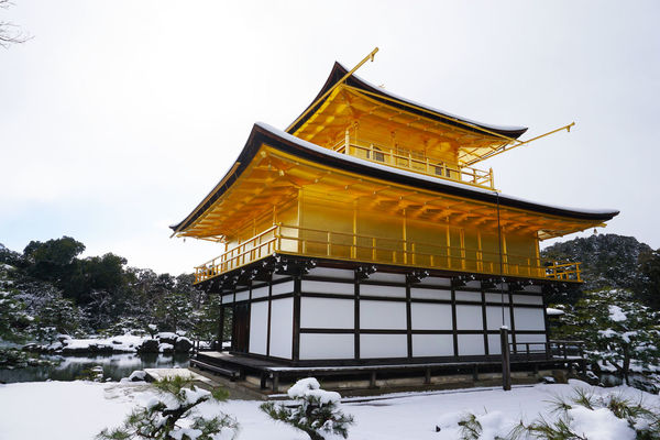2017 Architecture Built Structure Gold Gold Colored Japan Kinkakuji Kinkakuji Temple Kyoto Landscape Place Of Worship Religion Sky Snow Spirituality Temple Tree White Winter 京都 金閣寺 雪 鹿苑寺