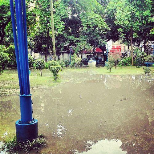 KolkataParks WhereEverYouGo YouGetOnePark UmbrellazEveryWhere