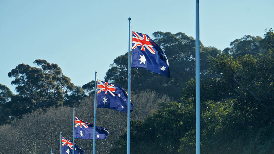 Low angle view of australian flags by trees against clear sky