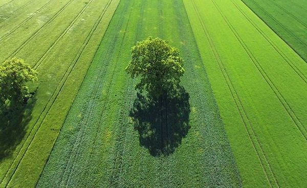 Germany from above. Parrot Bebop2 Quadcopter 🚁 🎮 DEfromAbove Munich München Nofilter