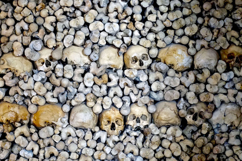 Full Frame Shot Of Skulls And Bones