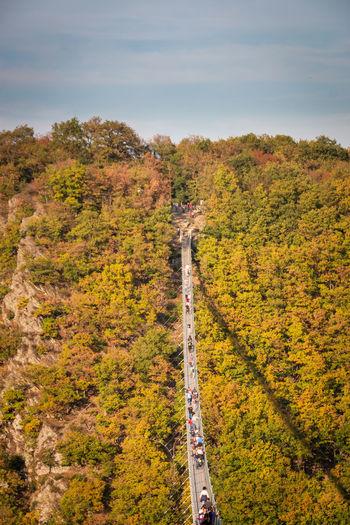Visitors walking across geierlay suspension bridge in the german region of hunsrück