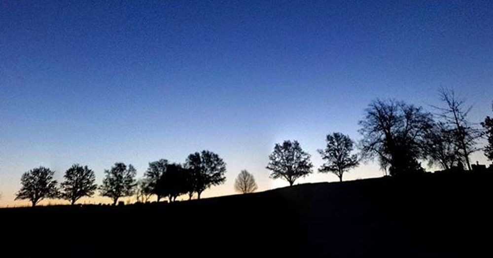 Treeline at sunrise. .....panoramic shot....Ks_pride Atchison Wow_america World_bnw Graveyard_dead Nikeplus Nike Nikeplusrunning Thingsoneseesondailyrun 5kadaykeepsthecrazysaway Kansasrunner Fuckyeah