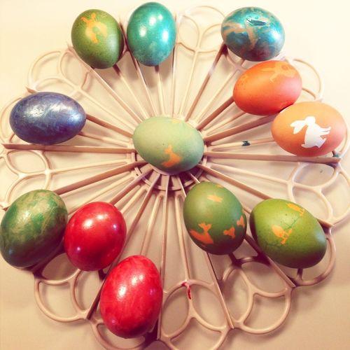 Happy Easter, Bunny