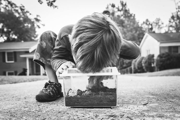 Child looking at frog in terrarium outdoors