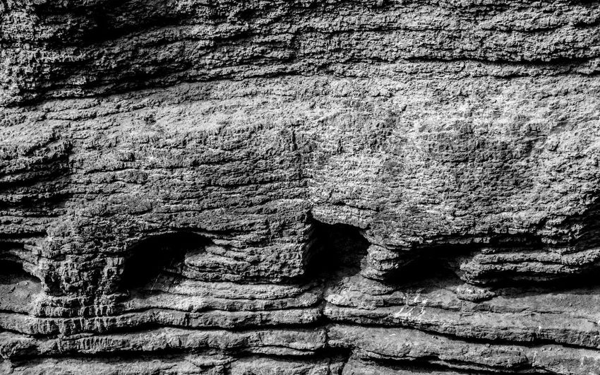 Ancient Backgrounds Beauty In Nature Black And White Close-up Cracked Day Greyscale Nature No People Outdoors Rock - Object Rough Texture Textured  Tree