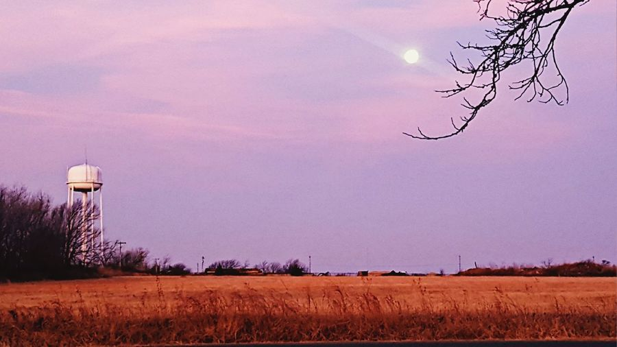 Early Morning View of the Open Field and Watertower with the Moon in Oklahoma. Watertower Country Road Oklahoma Beatiful Sky Morning Moon Sky Bare Tree Rural Scene Outdoors Tree No People Nature Beauty In Nature Astronomy Day