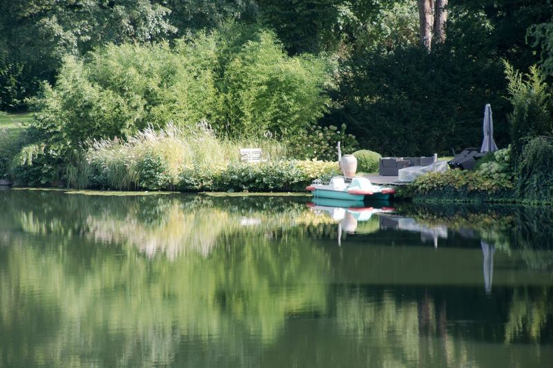 Beauty In Nature Boat Boating Day Green Color Growth Lake Leisure Activity Mode Of Transport Nature Nautical Vessel Non-urban Scene Reflection Relaxation Scenics Tranquil Scene Tranquility Tree Tretboot Waldsee Water Waterfront Zehlendorf