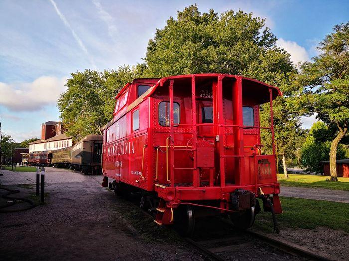 Tree Locomotive