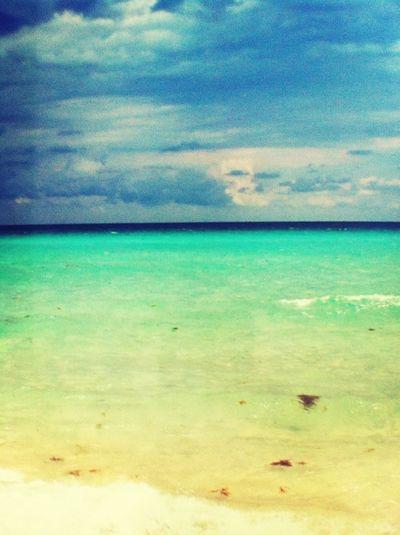 Florida 2012 *.*