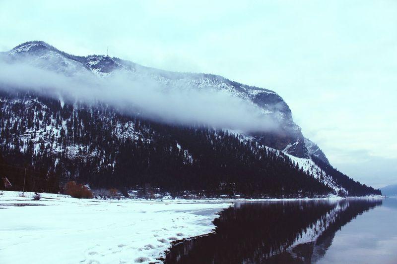 Reflect Winter
