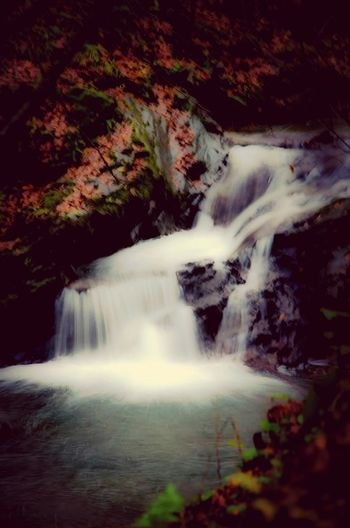 Naturelovers Autumn Colors Waterfall Travelling
