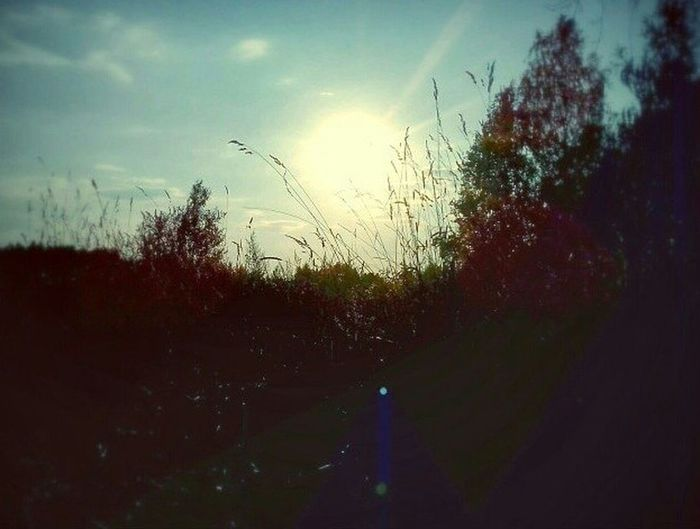 Sun Beautiful Weather