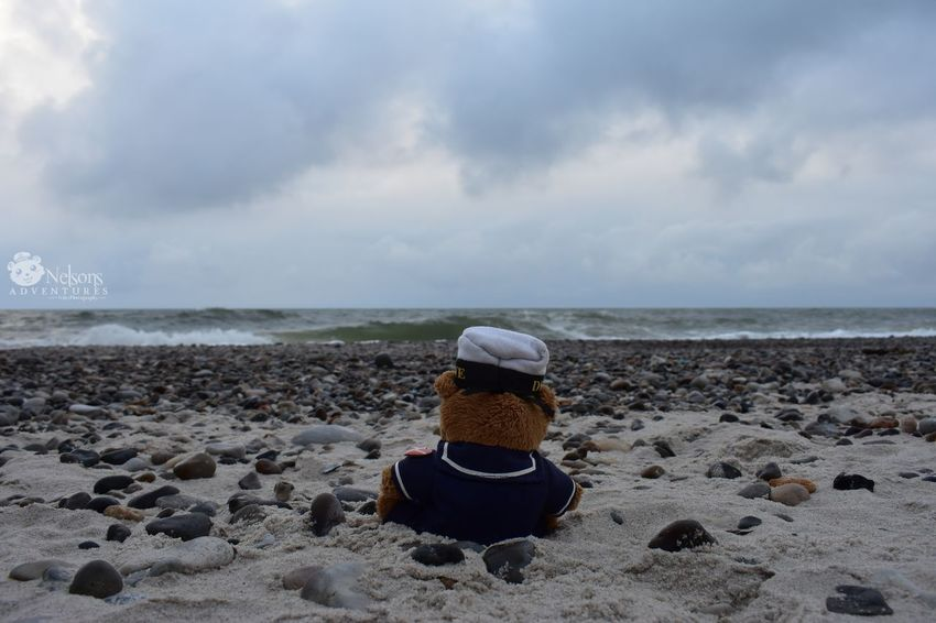 NelsonsAdventures Teddy Teddy Bear Stuffed Toy Teddy Bears Beach Pebble Beach Pebbles And Stones Sand Sea Seascape Northsea Denmark Denmark 🇩🇰 Landscape Landscape_Collection Watching The Sea Waves, Ocean, Nature Scenics EyeEm Nature Lover Horizon Over Water EyeEm Masterclass Nature_collection Tranquility Water