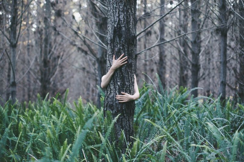 Hands Tree Forest One Person Nature Tree Trunk Lifestyles Beauty Plant Real People Beauty In Nature Branch People Curly Hair Human Hand Adults Only Tree Area One Woman Only Day Human Body Part